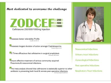 Zodcef -500 - Zodley Pharmaceuticals Pvt. Ltd.