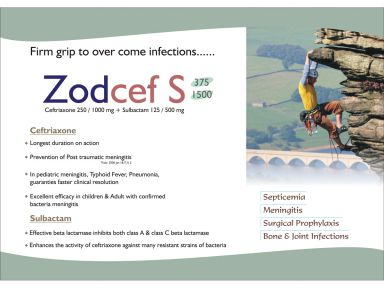 Zodcef- S-375 - Zodley Pharmaceuticals Pvt. Ltd.