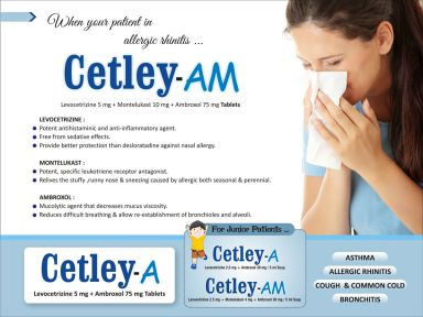 CETELY AM - (Zodley Pharmaceuticals Pvt. Ltd.)
